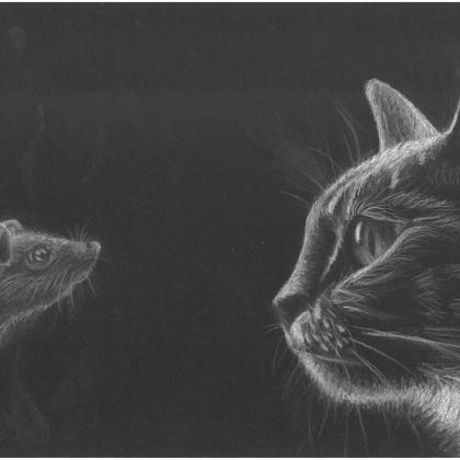 inverzní kresba kočka a myš