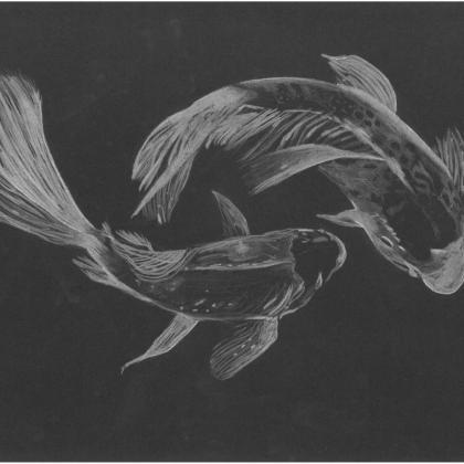 inverzní kresba ryby
