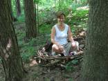 tvorba v lese